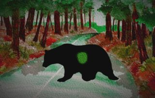 animated Black Bear