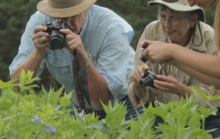 Citizen scientists in Arboretum