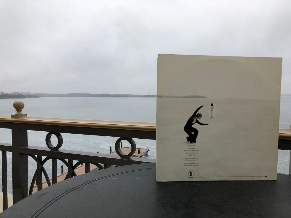 "Picnic Point can be seen from the Edgewater Hotel terrace and on the back of Joni Mitchell's ""Hejira."" (Maureen McCollum/WPR)"
