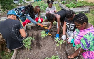 Members of the Young Cats (Community Action Team) of Metcalfe Park Community Bridges and GroundWork Milwaukee with supervisor Alex Hagler at their Legacy Garden. (Photo by Shoua Yang)