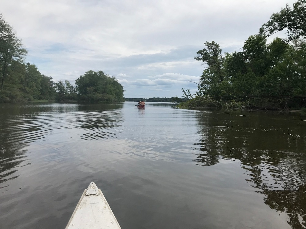 The Wisconsin River backwaters are calm and lush as paddlers move between challenges. (Rob Mentzer/WPR)