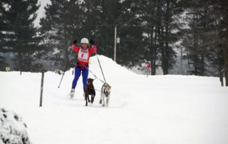 Gleason Woman Glides Through Winter By Skijoring