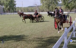 Carriage Classic Evokes Era of Elegant Horse-Drawn Transport